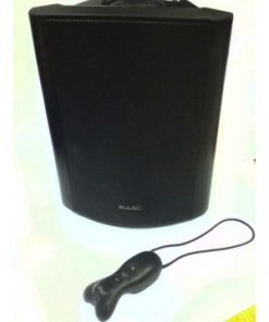 Wireless Soundfield system